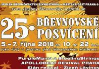 Břevnovské posvícení - Praha