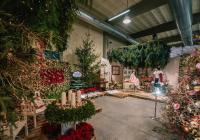 Floria Vánoce - Kroměříž