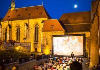 Letní kino NFA Anežka LIVE!!: Ladislav Rychman / Starci na chmelu
