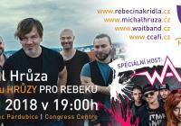 Michal Hrůza a WAIT pro Rebeku