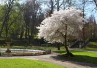 Městský park Trutnov