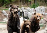 Den seniorů v Zoo Brno