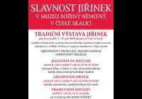 Tradiční výstava jiřinek - Česká Skalice