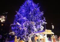 Rozsvícení vánočního stromu - Žatec