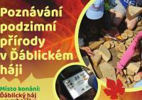 Poznávání podzimní přírody v Ďáblickém háji - Praha