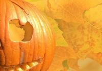 Halloween v  Zoo Tábor