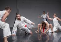 Potmehúd - Slovenský taneční temperament