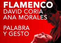 Flamenco - Palabra Y Gesto