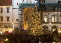 Rozsvícení vánočního stromu - Olomouc