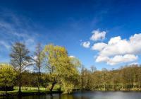 Výlov rybníka - Krásná Hora nad Vltavou