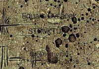 Eduard Ovčáček / Struktury