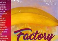 Factory Tour 2018