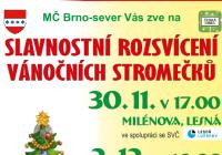 Rozsvícení vánočního stromu - Divišova čtvrť Brno