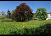 Zámek a park v Lešné