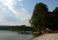 Milčanský rybník, Holany