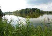 Přírodní rezervace Jílovka, Holany