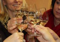 Svatomartinská vína a slavnosti - Forum Liberec