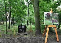 Severní zahrady pod Špilberkem otevřeny - Brno