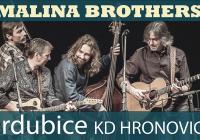 Malina Brothers Pardubice KD Hronovická