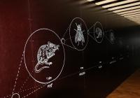 KUK - nová výstava ve VIDA!