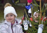 Zdobení vánočních stromečků