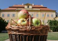 Jablečný den - Zámek Krásný Dvůr