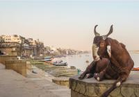 Indie: Těžko uvěřitelná země