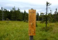 Naučná stezka Černohorské rašeliniště