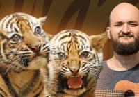 Křest tygrů sumaterských v Zoo Jihlava