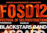 Festival Of Selfdestruction - Brno Jundrov