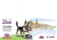 Dog Puller v Praze