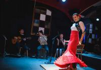Žhavé flamenco na zlínském zámku
