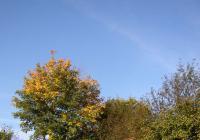 Bramborová sobota na Veselém kopci