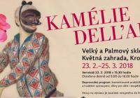 Výstava kamélií a vernisáž v Květné zahradě v Kroměříži