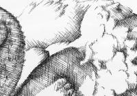 Perokresba s lavírovanou kresbou