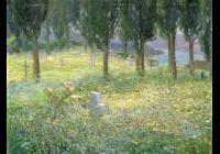 Kvetoucí krajiny Karla Langera