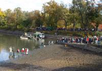 Výlov rybníka Podroužek - Netolice