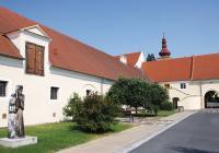 Dobrovická muzea, Dobrovice