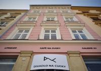 Mladá krev současného slovenského tance