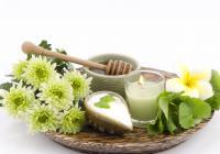 Detoxikace pomocí bylin