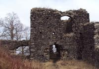 Zřícenina hradu Ronov
