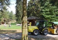 Světový den žiraf v Zoo Olomouc