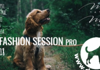 SlowFashion Session pro Dogpoint