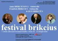 Festival Brikcius: violoncellový koncert ke 100. výročí