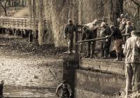 Výlov rybníka v Zoo Ostrava