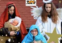 Živý betlém - Zoo Hodonín