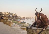 Indie: Těžko uvěřitelná země (Praha)