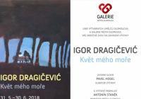 Igor Dragičević – Květ mého moře
