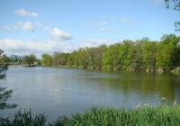 Výlov rybníka Byňovský - Nové Hrady