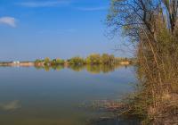 Výlov rybníka Proudnice - Hradišťko